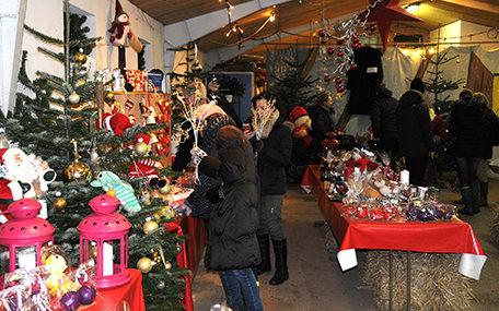 Mosegaardens Juletræssalg Gavekort